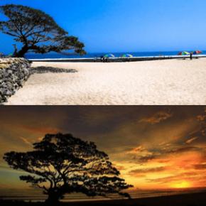 Pantai Pok Tunggal – Bakir Indah Yang Tersembunyi