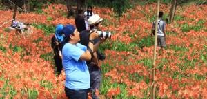 Taman Bunga Puspa Patuk